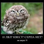 10lv_kvest_serp_net